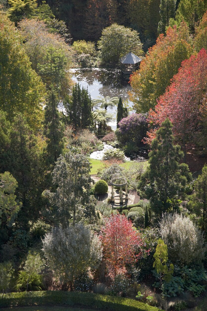 Temple House and Cypress Pond