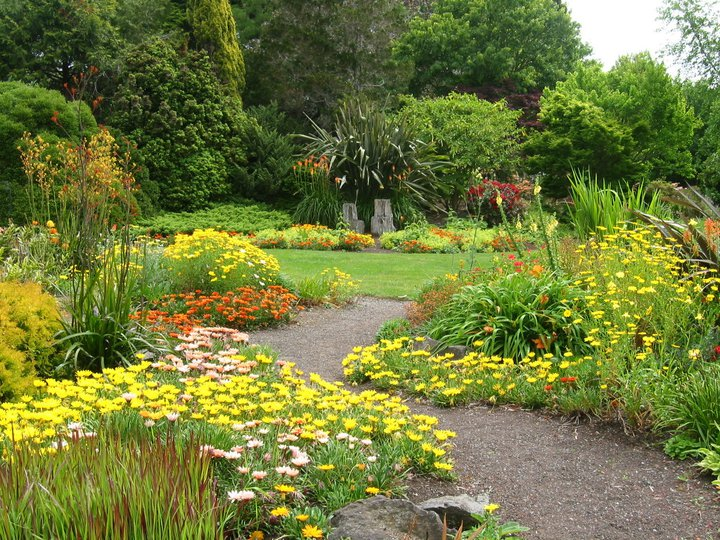 Rockery and Lurid border