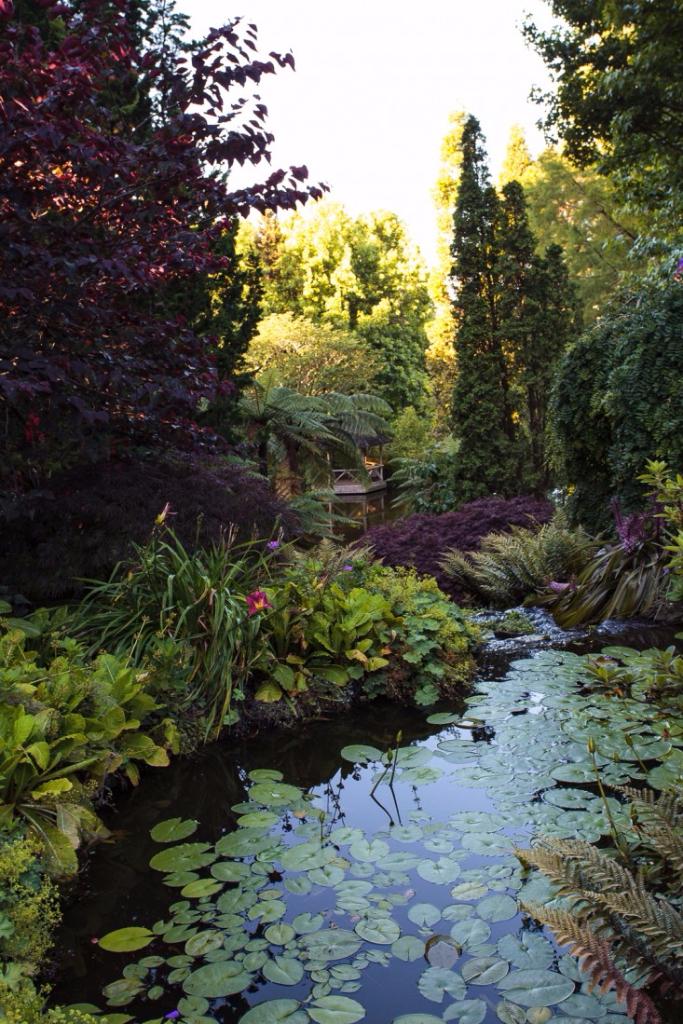 Weir Pond Spring 2017