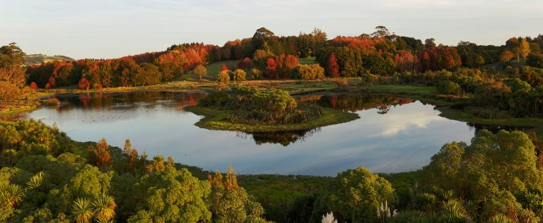 Autumn Colours at Ayrlies Garden and Wetlands